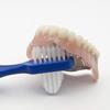 Denture Brush - Dynarex - DBR-4860-2